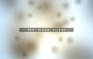 The Moon Sliver Review
