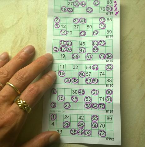 Bingo_1